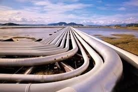 Oil India forms JV for North-East Gas Grid Pipeline  project
